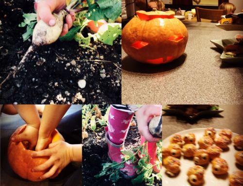 Kürbisfest bzw. Halloween mit Kindern feiern – Woher kommt's und Vorschläge und Ideen!